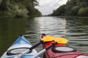 Twin Kayak Paddle