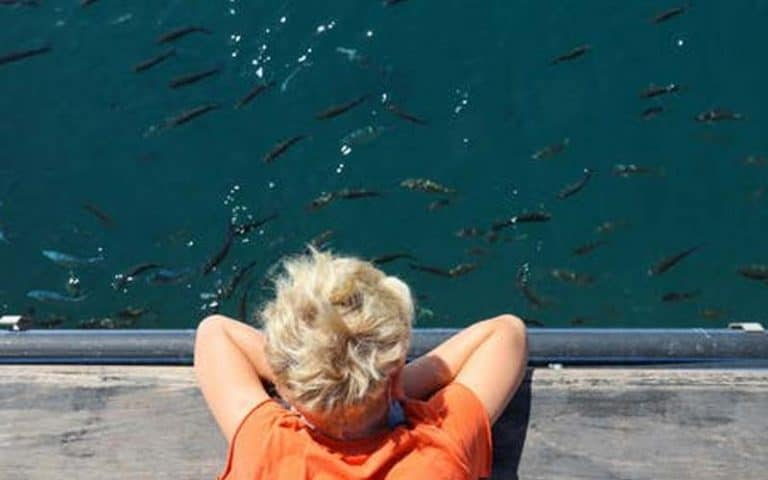 What should I look for when buying a fish finder?